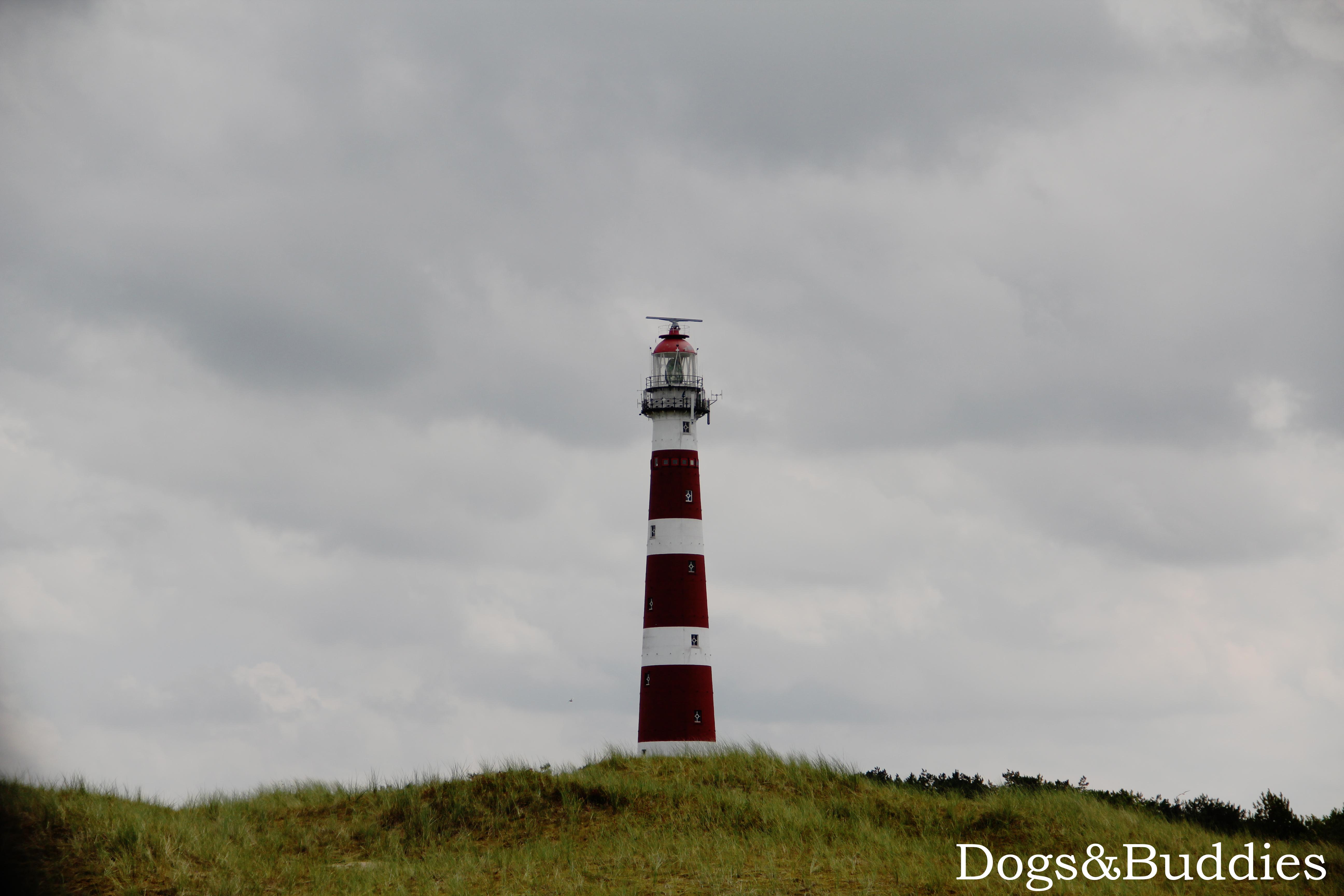 Der Leuchtturm Bornrif bei Hollum auf Ameland