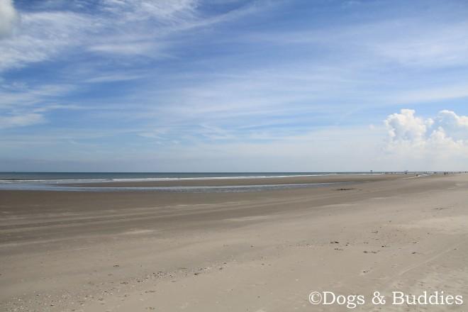 Sonne, Sand und Meer auf Ameland