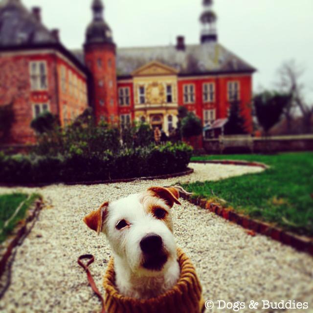 Besuch auf der Landpartie Schloss Gödens