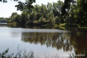 Der Drielaker See